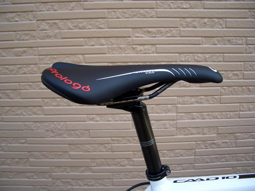 2012CaCAAD10RED005.JPG