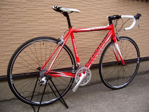 2012CaCAAD8-7%20RED008.JPG